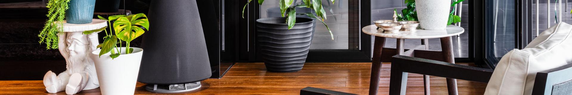 Living room interior with 4 indoor plants using Eden pots