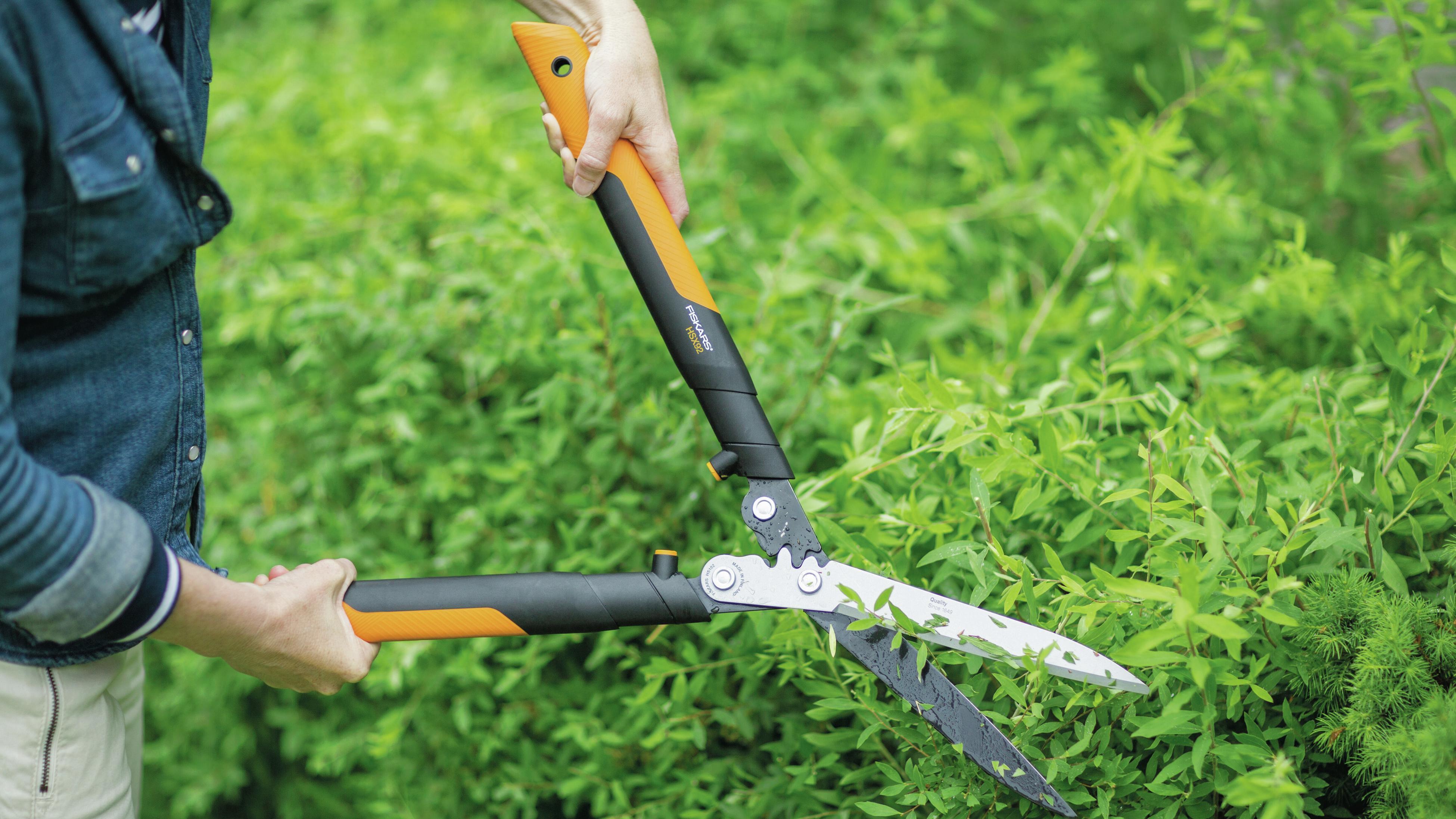 Using hedge shears to prune a hedge