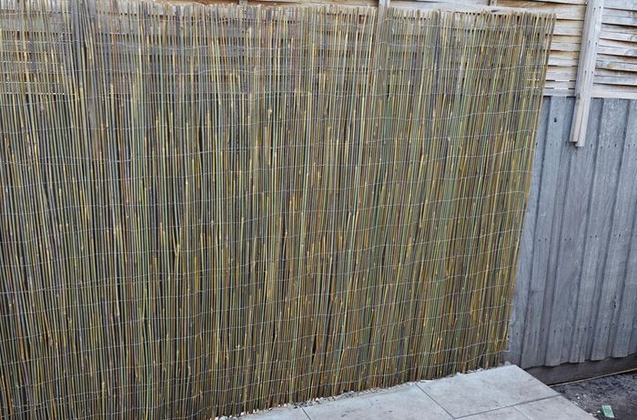 A bamboo screen attached to a paling fence