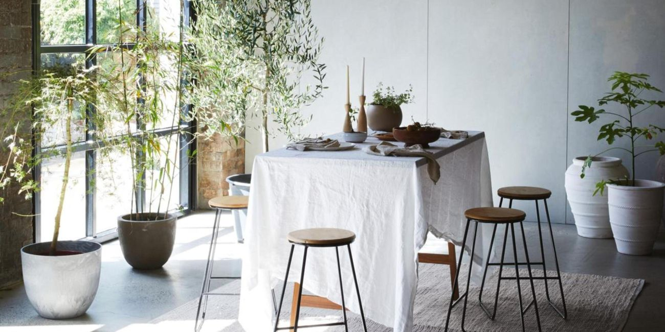 Dining room with table, bar stools and indoor plants