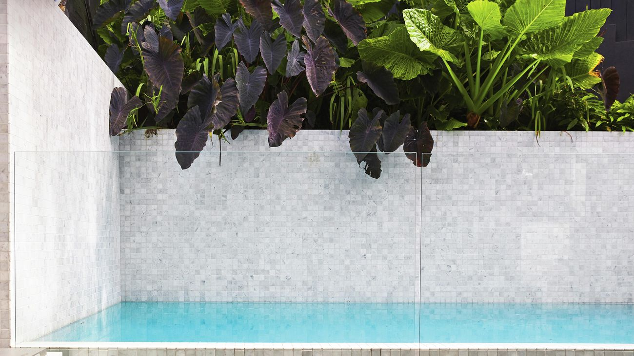pool with glass fence