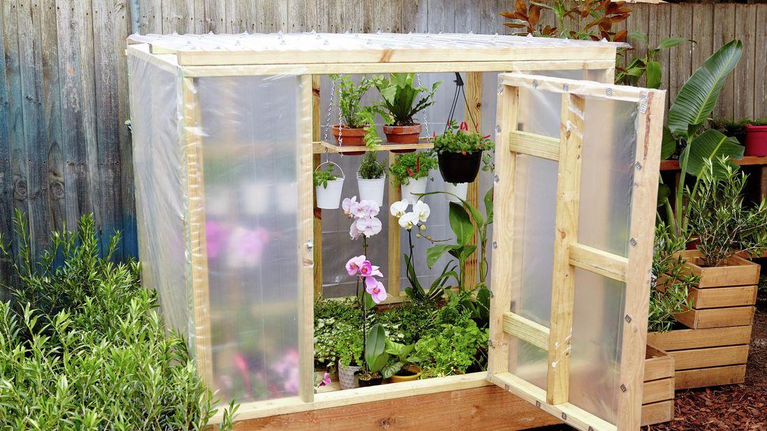 DIY greenhouse full of plants.