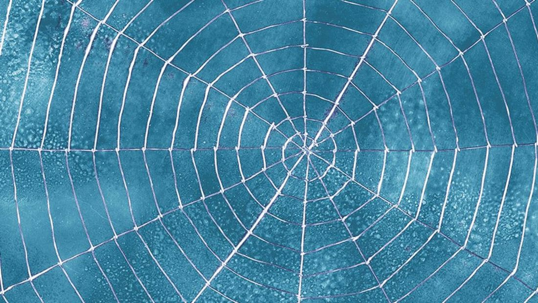 Close up of a spider's web with a blue background.