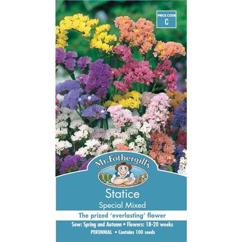 Mr Fothergill's Seed Statice Special Mix
