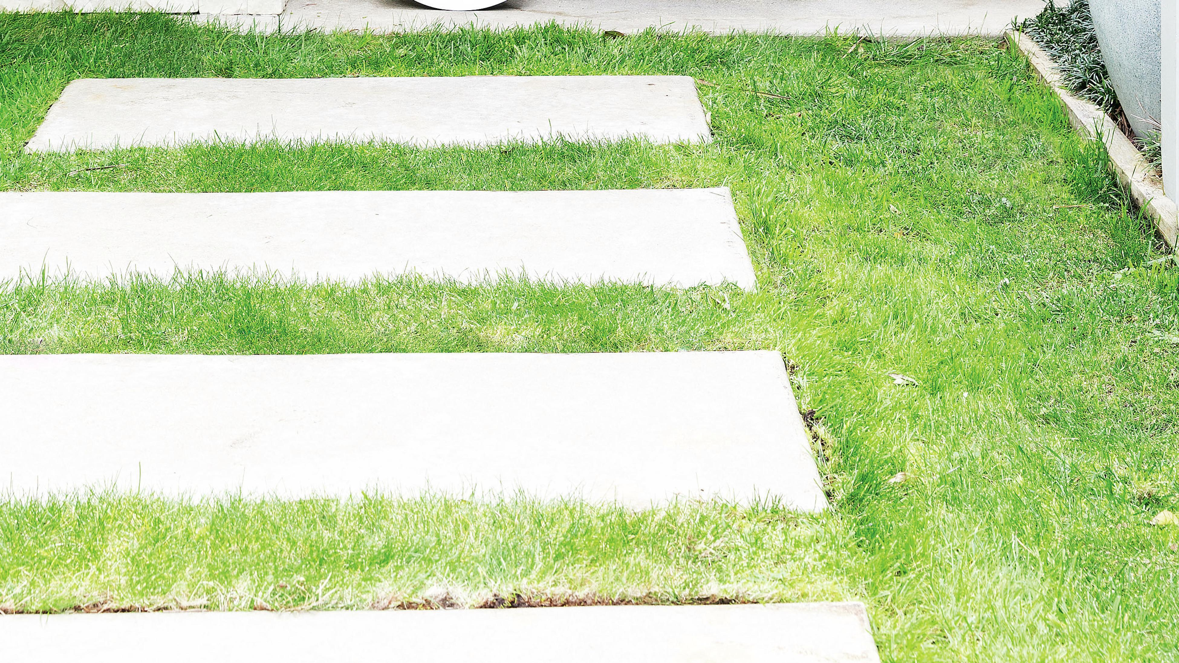 Concrete pavers set into a lawn.