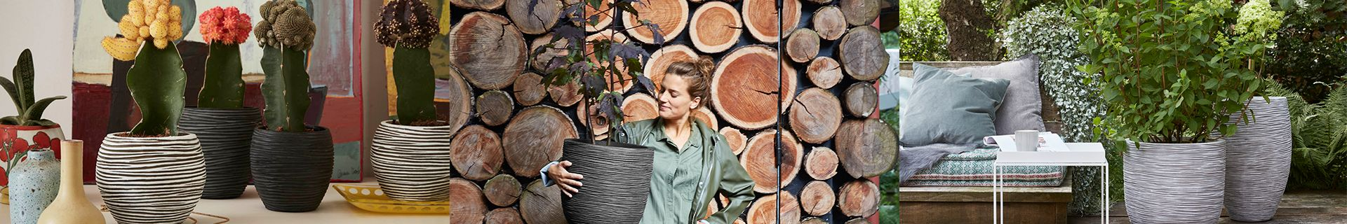 Woman holding plant pot. Assortment of cacti in small pots. Outdoor area with table, chair and plant.