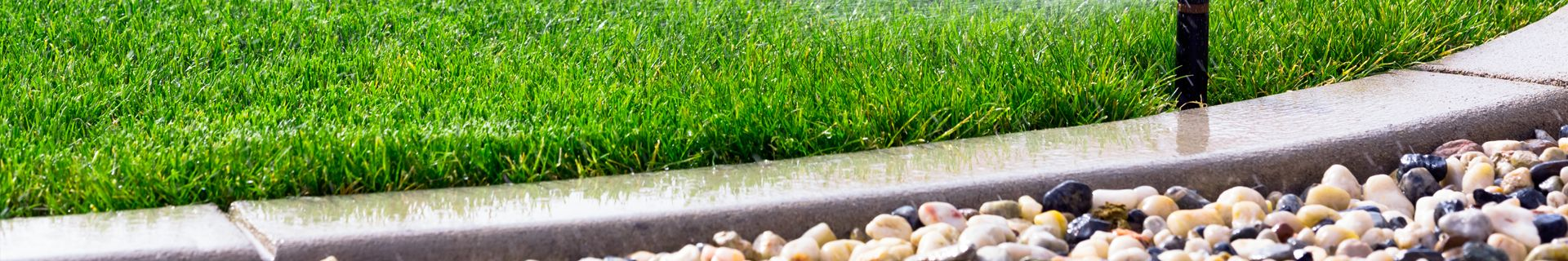 A water sprinkler watering grass lawn.