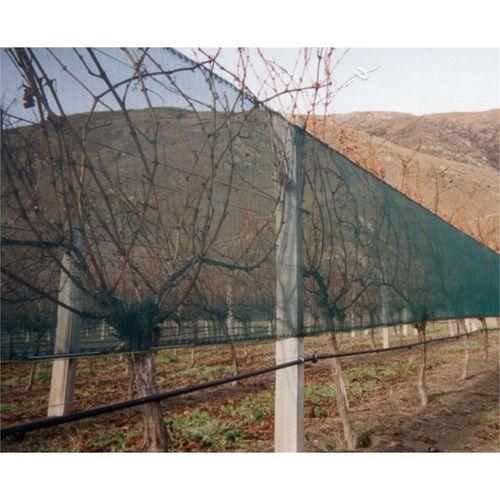Coolaroo Windbreak Plus 1 x 1m per mtr Green