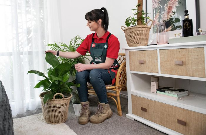 Person sitting in occasional wicker chair, caressing their plant.