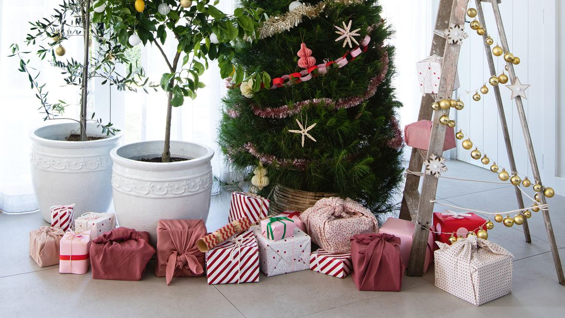 Four different types of Christmas trees, surrounded by gifts.