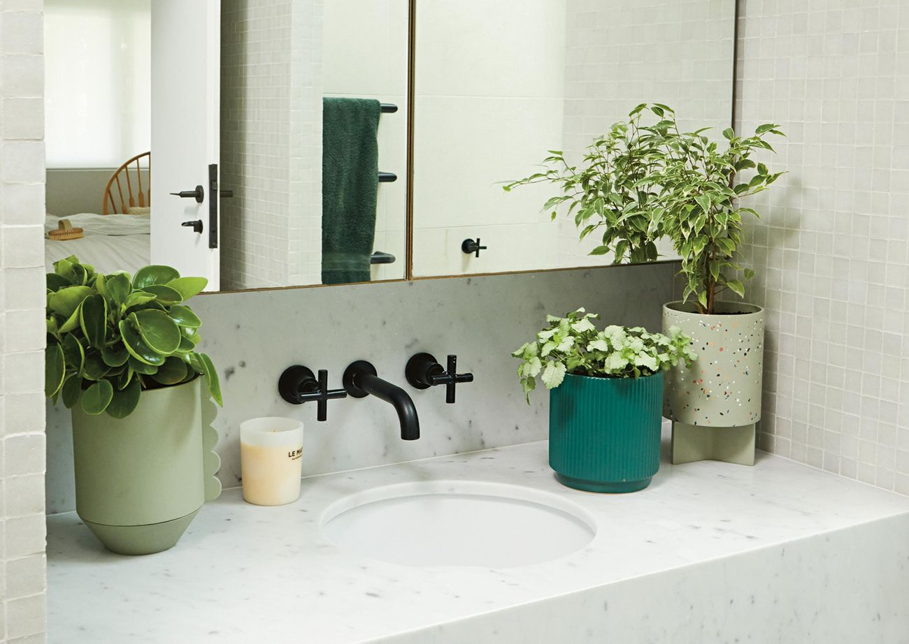 Washroom with large double door vanity mirrors, white marble benchtop, black tapware and potted plants