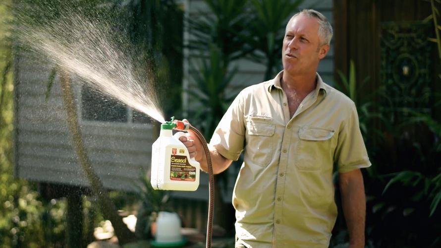 Man using fertiliser attached to garden hose to spray fertiliser over grass