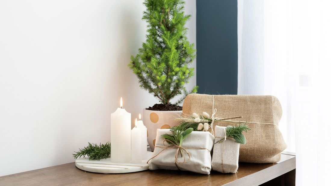 Table with presents and small pine tree on it.