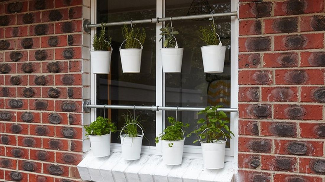 A selection of potted herbs, including parsley and thyme, in white hanging buckets outside a window.