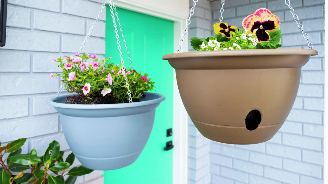 Pots with flowering plants hanging from the roof.