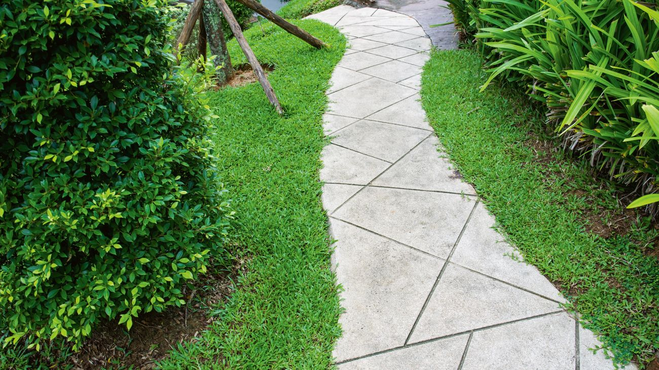 Paved pathway with grass on either side