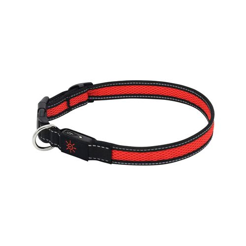 Mighty 40-55cm LED Adjustable USB Dog Pet Collar Reflective Light-Up Medium RD