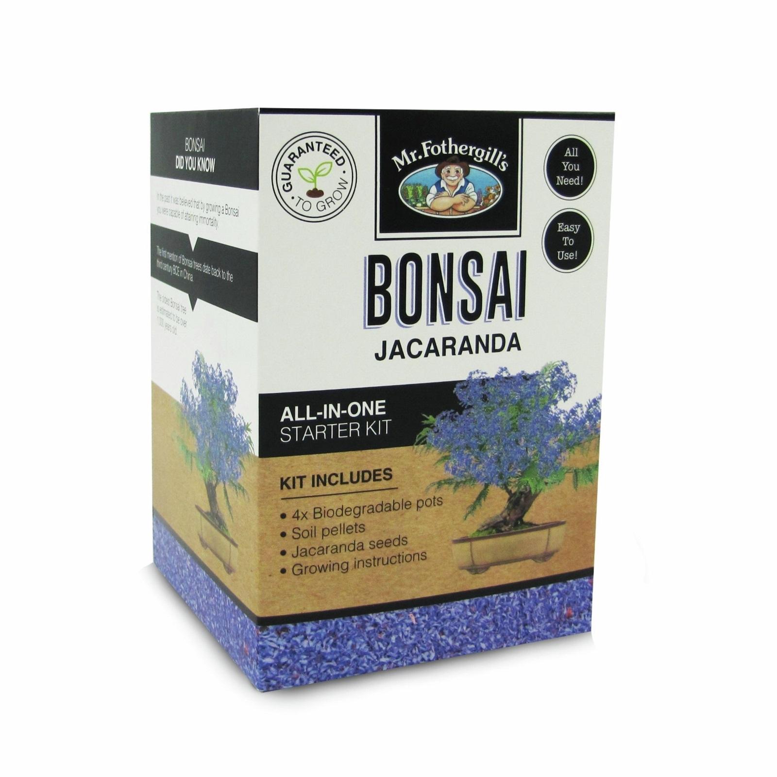Mr Fothergill's Jacaranda Bonsai Kit