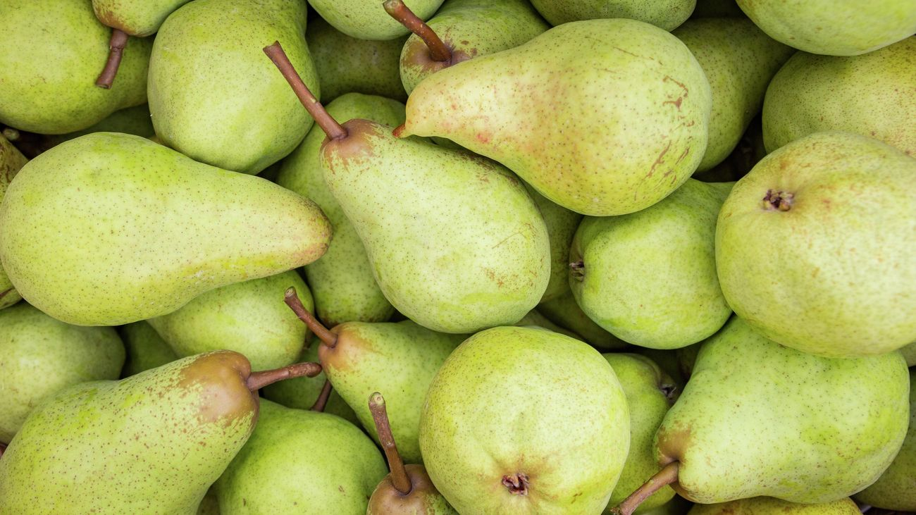 Lots of green pears