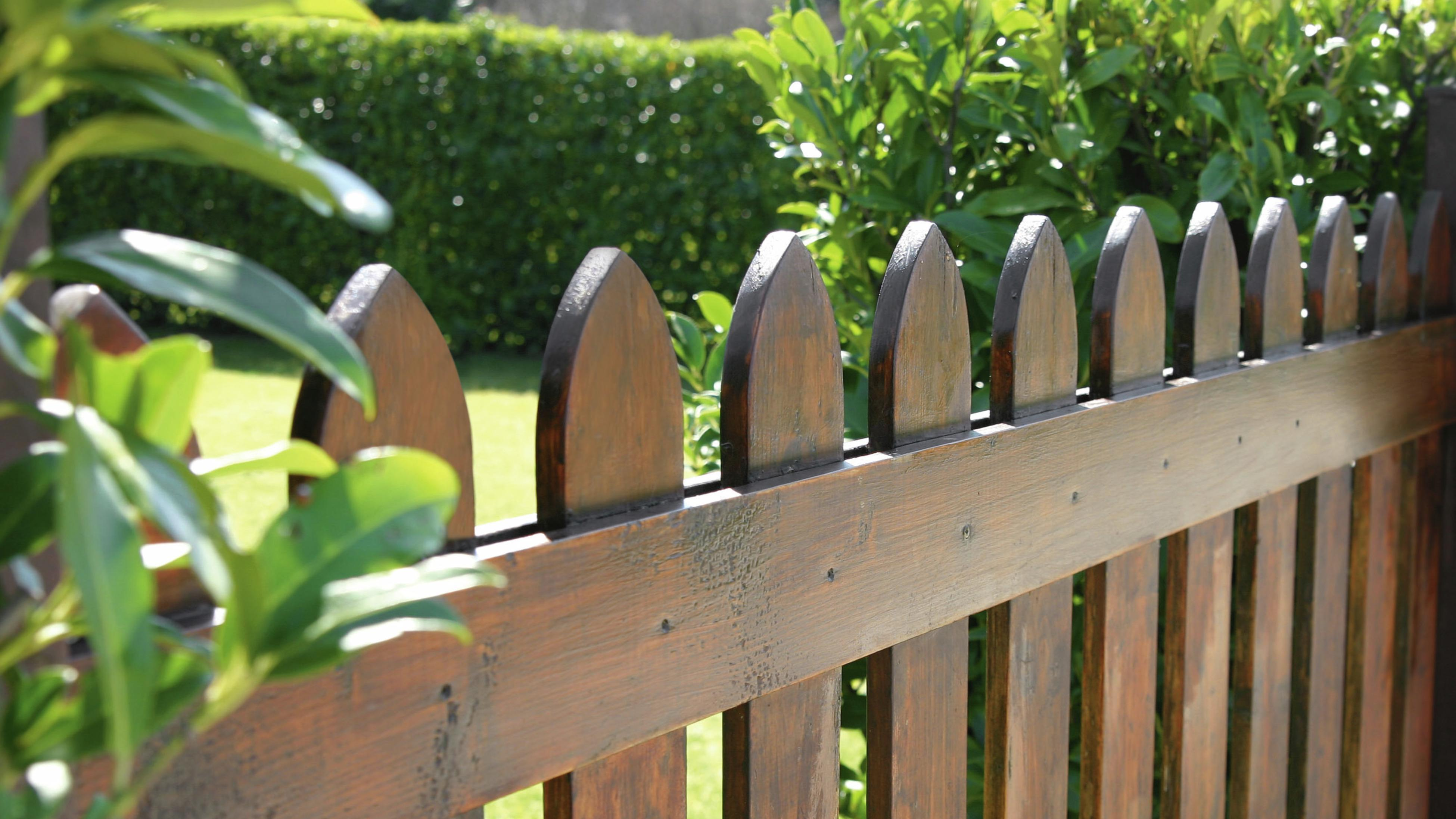 Close up of a Colorbond steel fence in a dark wood stain.