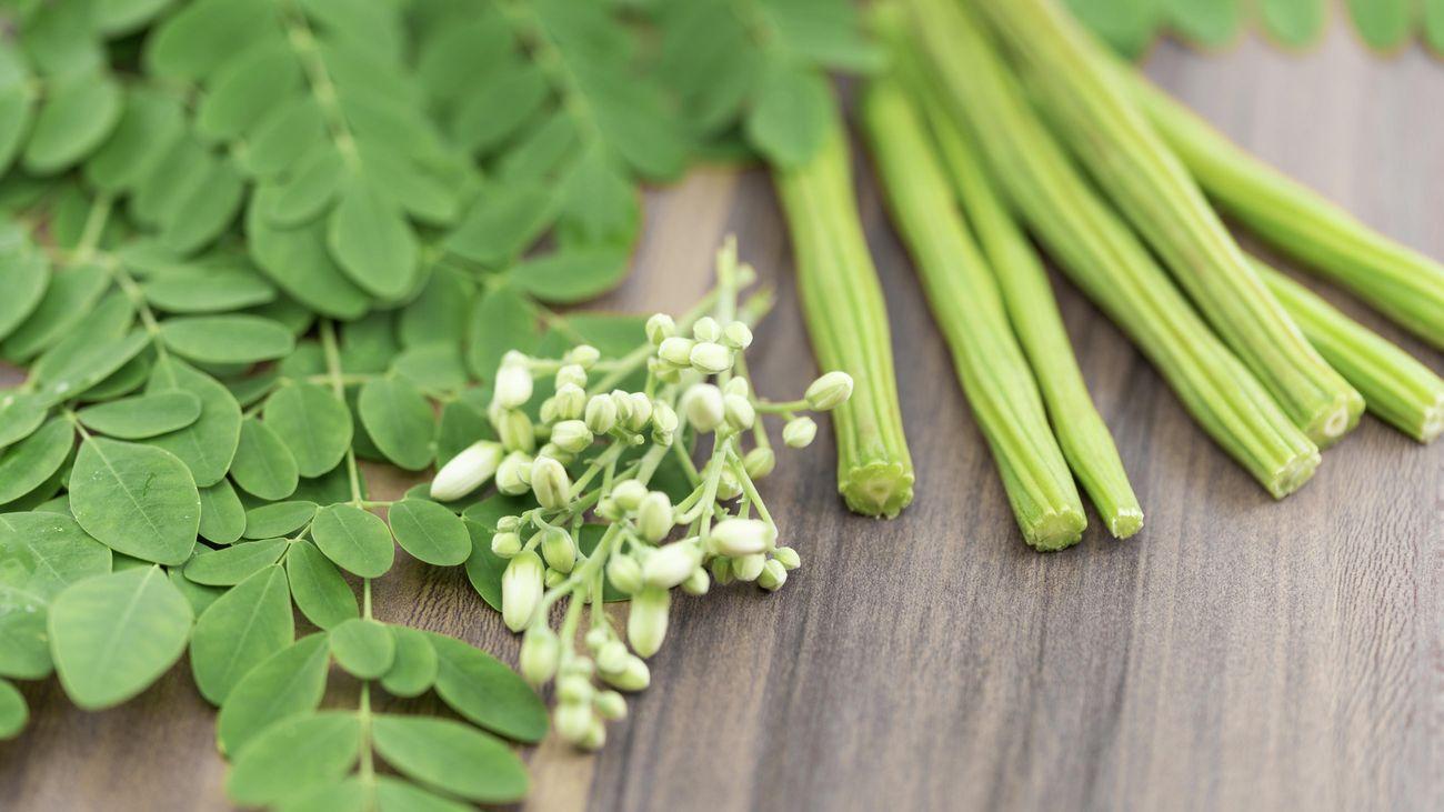 Moringa shoots and seeds in a close up shot.