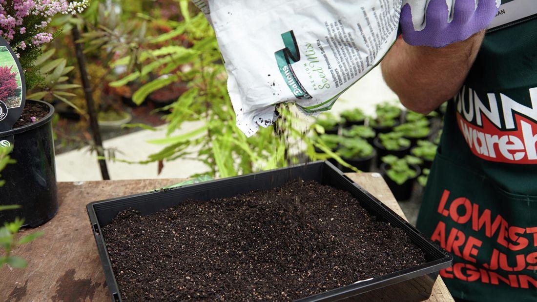DIY Step Image - How to propagate plants . Blob storage upload.