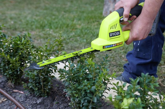 Person trimming a small hedge with power tool.