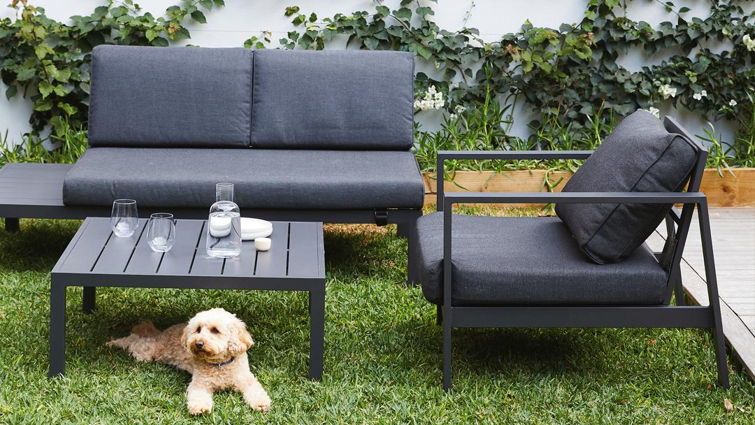 outdoor lounge with a dog