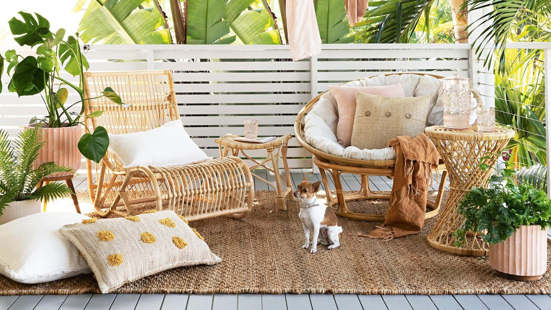 A modern style outdoor lounge retreat on a deck with hanging festoon lights, drinks trolley and potted plants with dog sitting on the rug