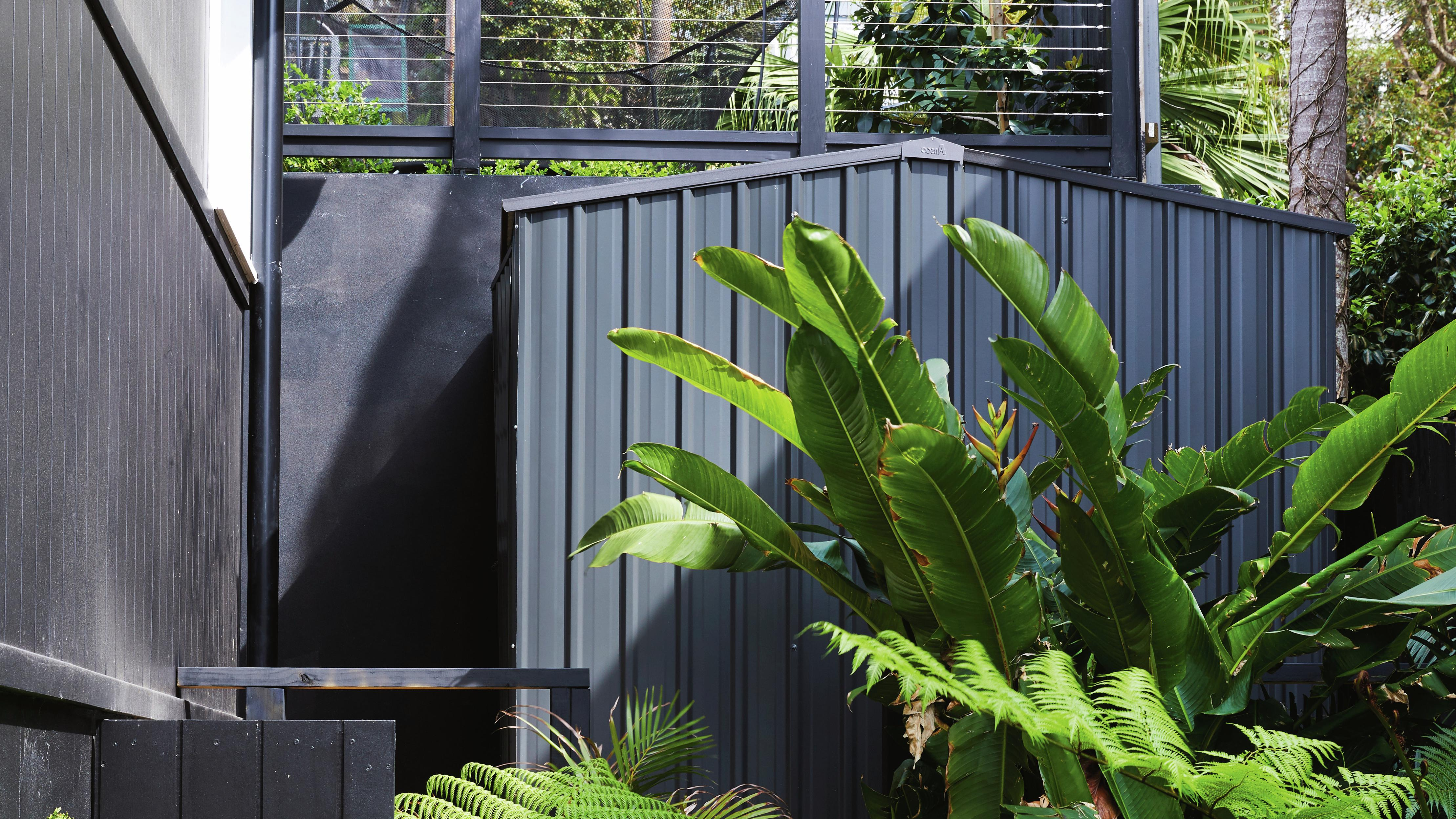 Dark shed blending in with surrounding fence and plants in front.