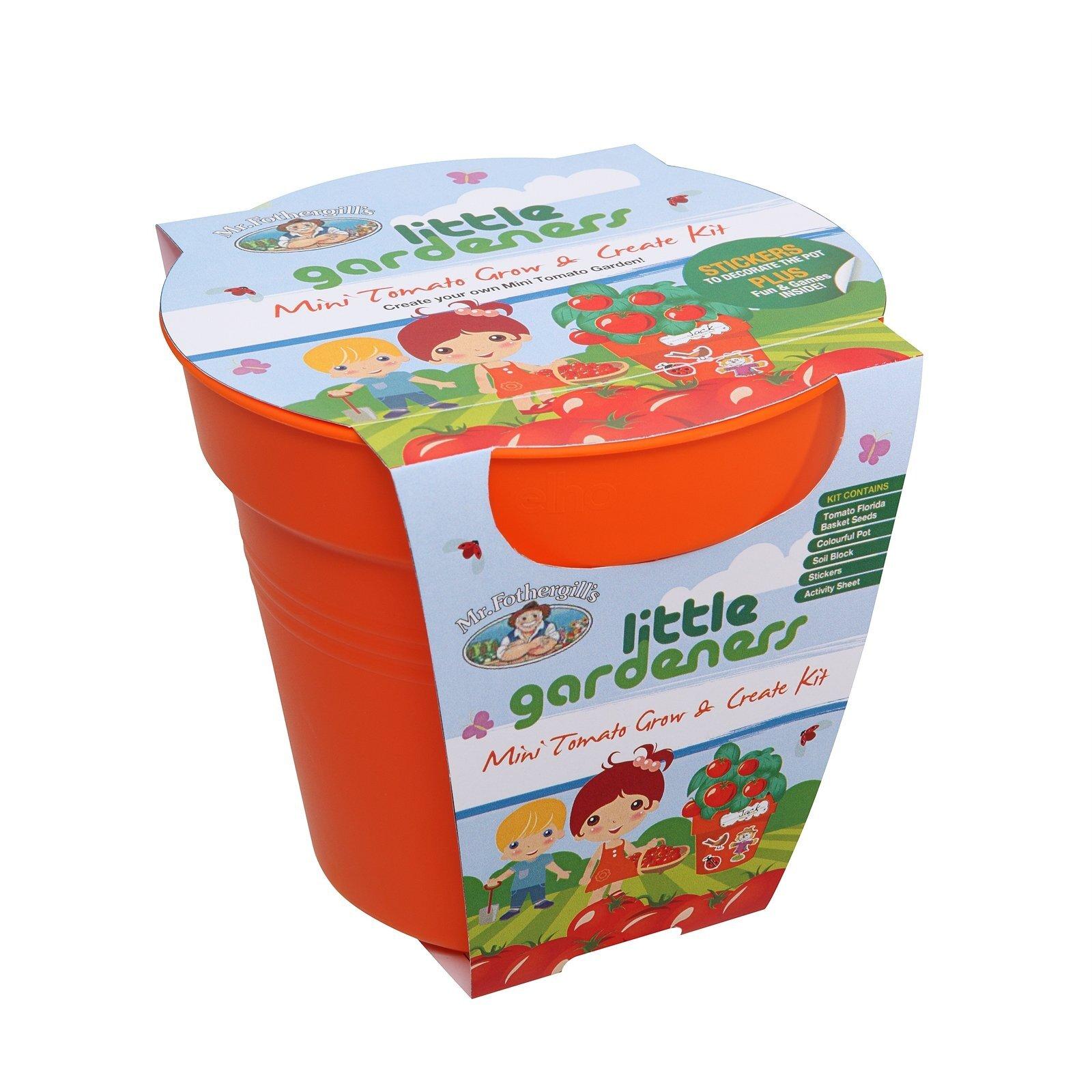Mr Fothergill's Little Gardeners Mini Tomato Grow And Create Kit