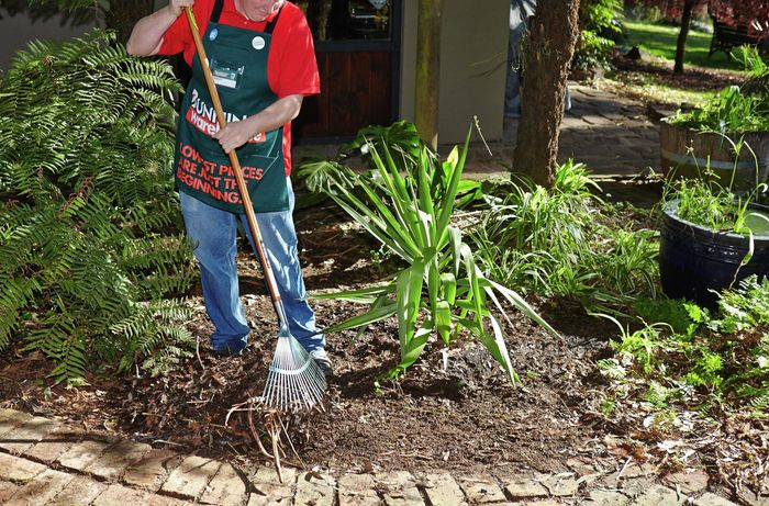 Person reducing ground cover.