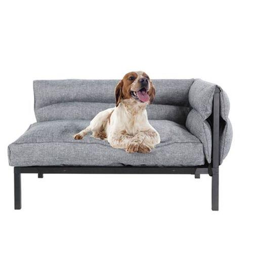 Paws & Claws 64.5cm Elevated Sofa Pet/Dog Medium Bed w/ Removable Cushion Grey