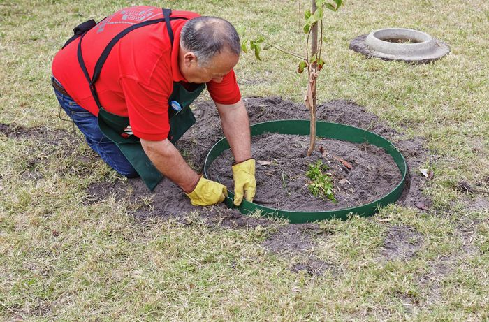 DIY Step Image - How to install garden edging around a tree . Blob storage upload.