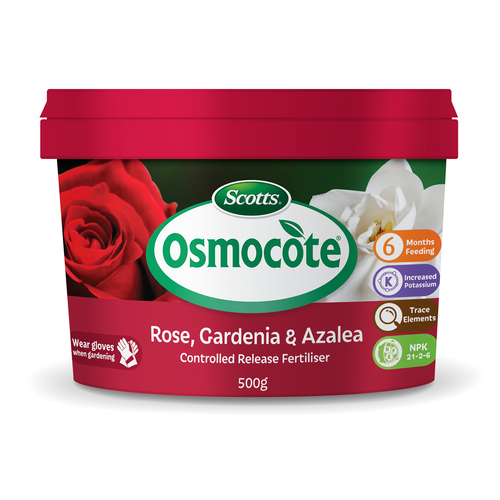 Scotts Osmocote 500g Roses, Gardenias, Azaleas And Camellias Controlled Release Fertiliser
