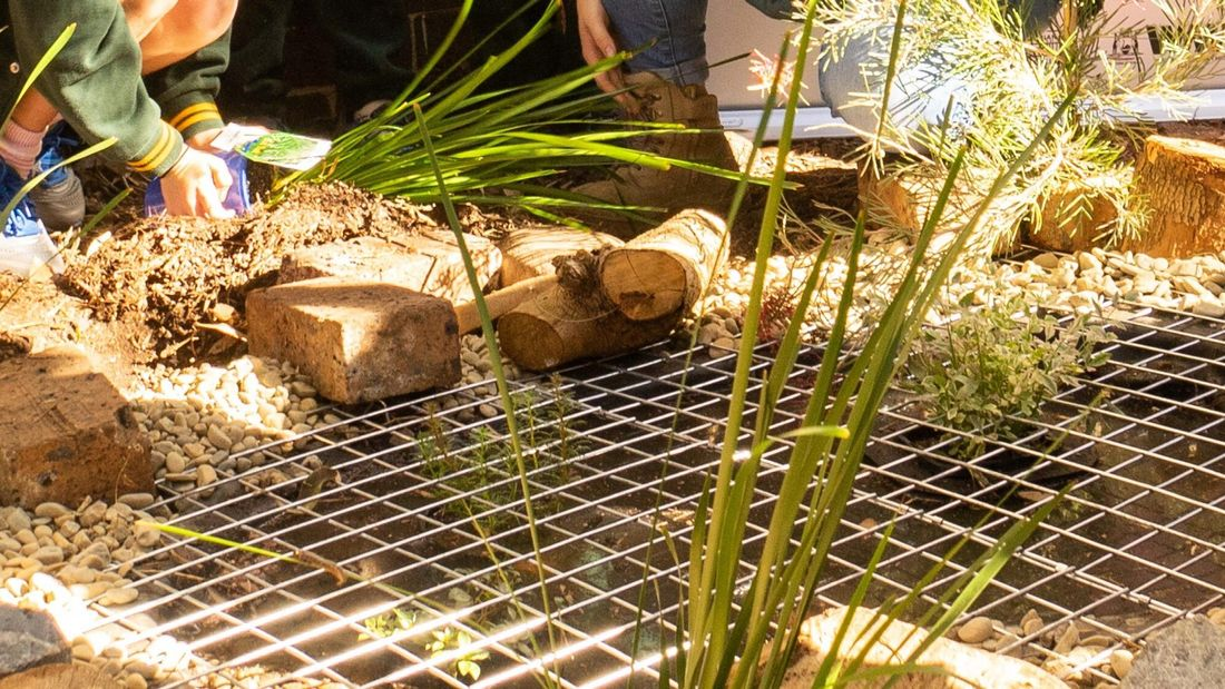Garden pond area with wiring sitting over a hole and various sized stones on the perimeter.