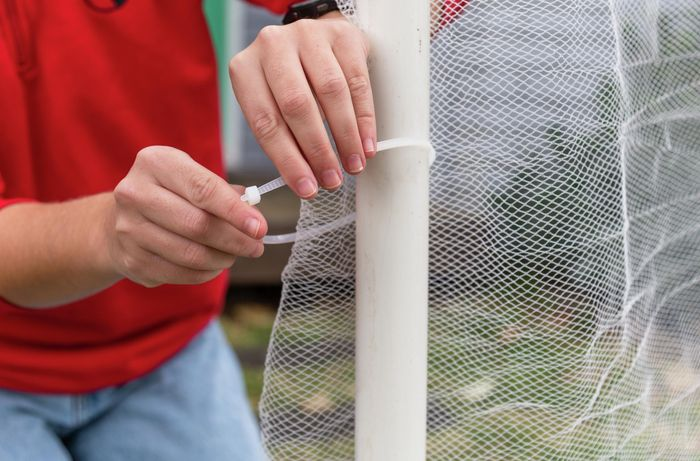 using cable ties to connect bird netting to pvc pipes