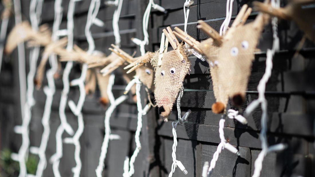 christmas lights and reindeer garland hanging from backyard fence