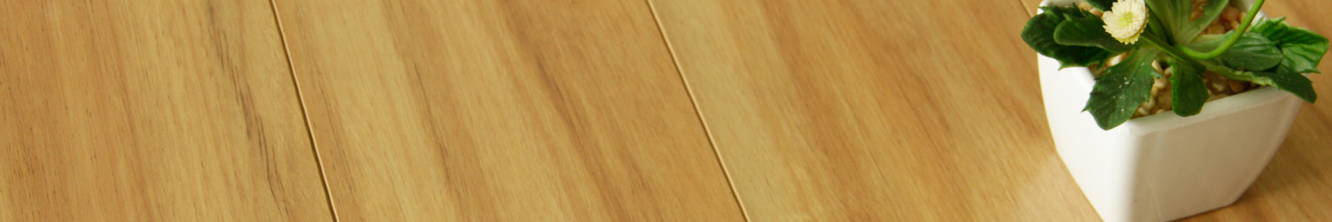 Timber flooring with plant.