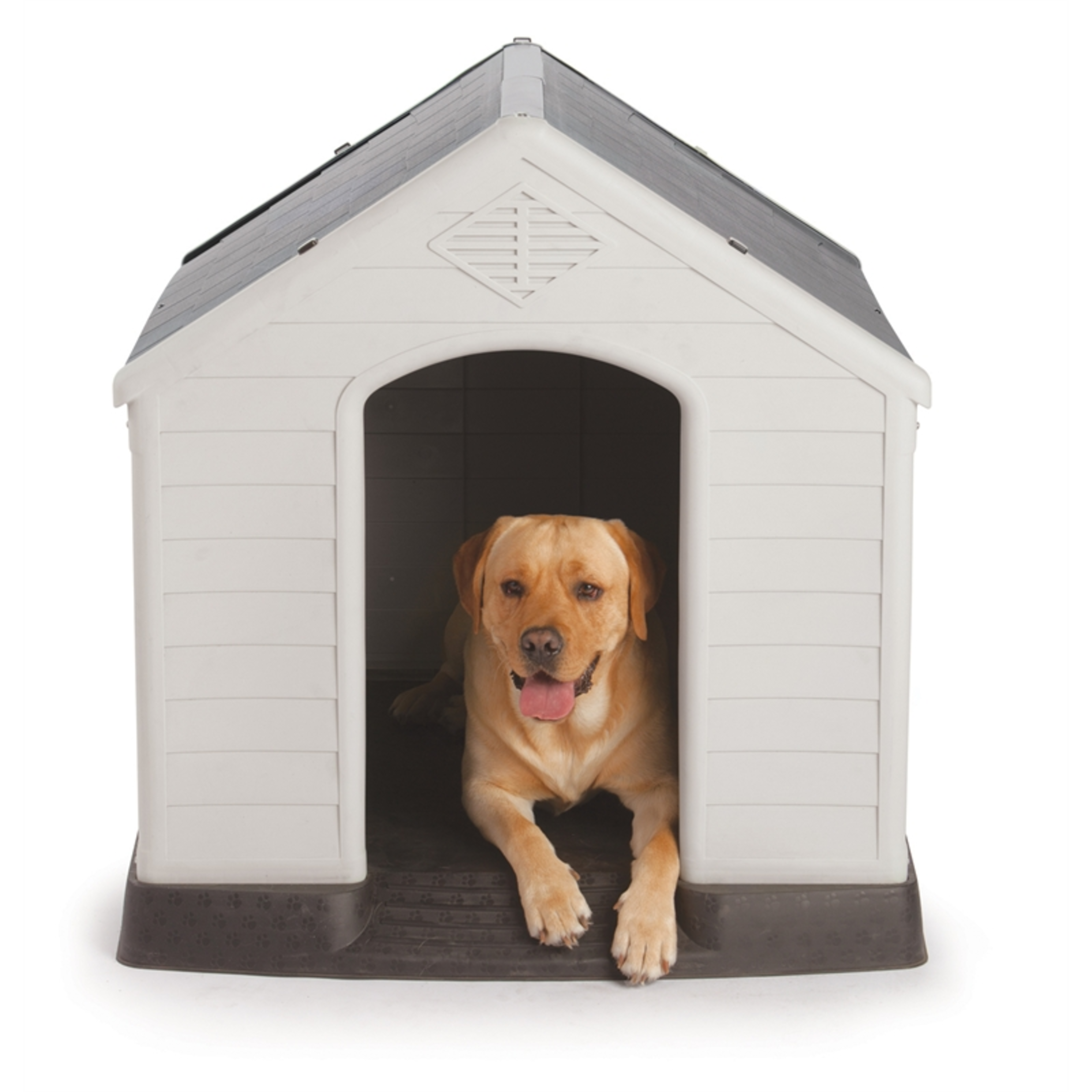Large dog in plastic kennel