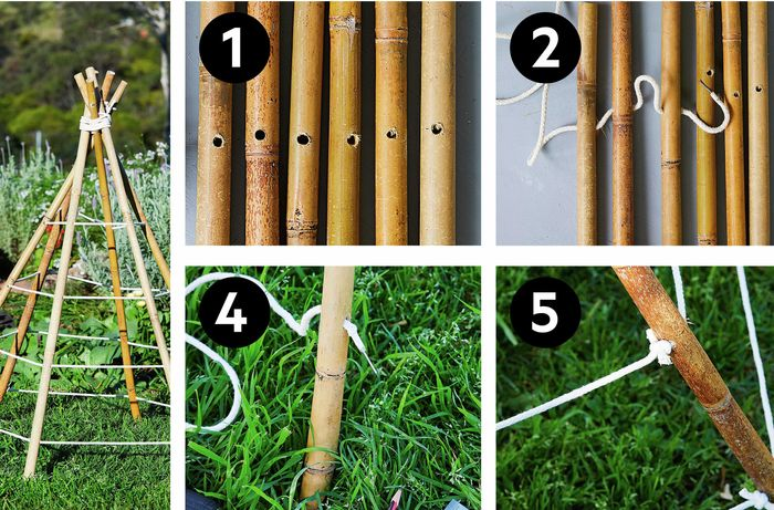 Bamboo cone plant support and 5 steps to make one