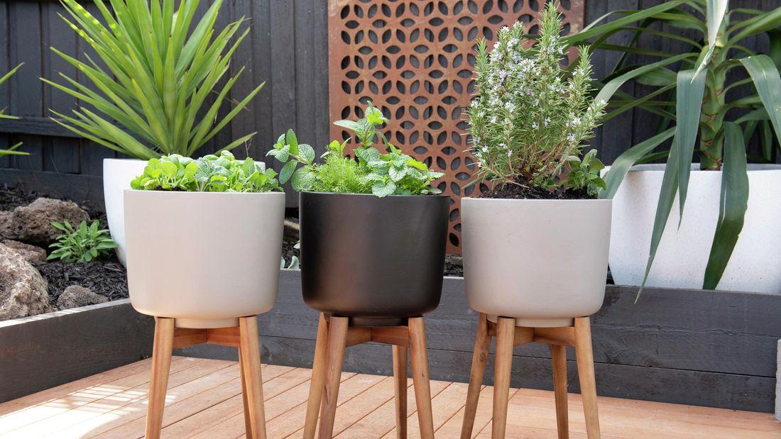 DIY - Header - How to design a herb garden