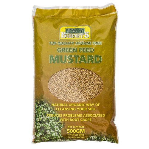 Green Manure Crop Mustard 500gm