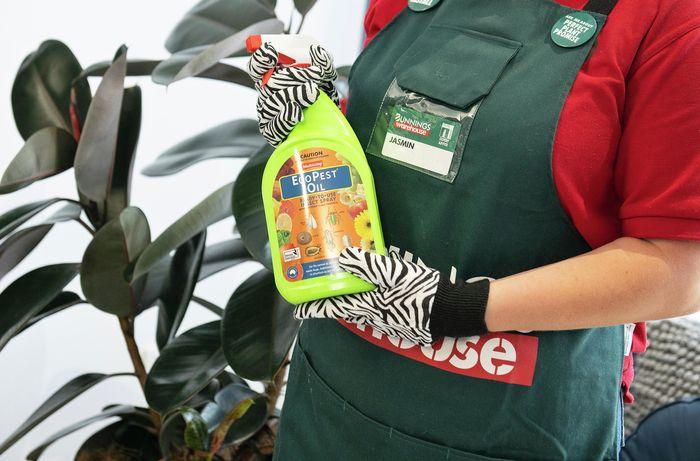 Bunnings team member Jasmin holding a spray bottle of EcoPest Oil