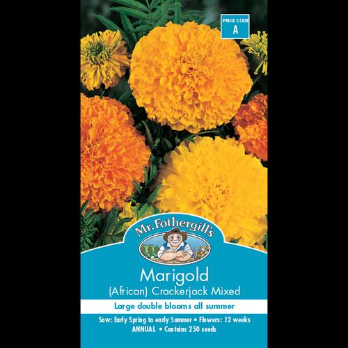 Mr Fothergill's Seed Marigold Crackerjack (African)