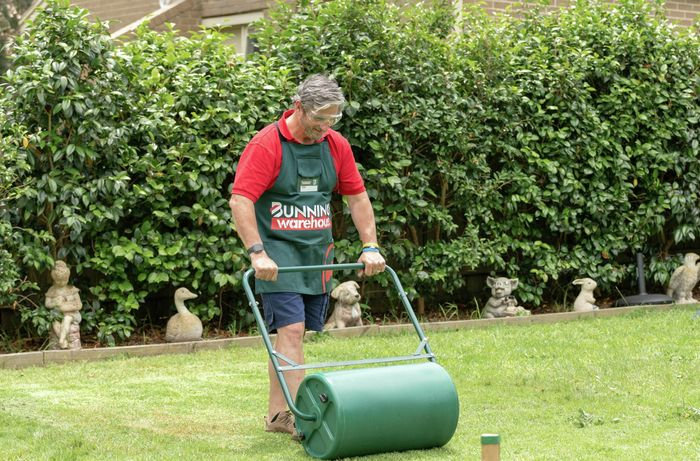 Bunnings team member using a garden roller on the lawn