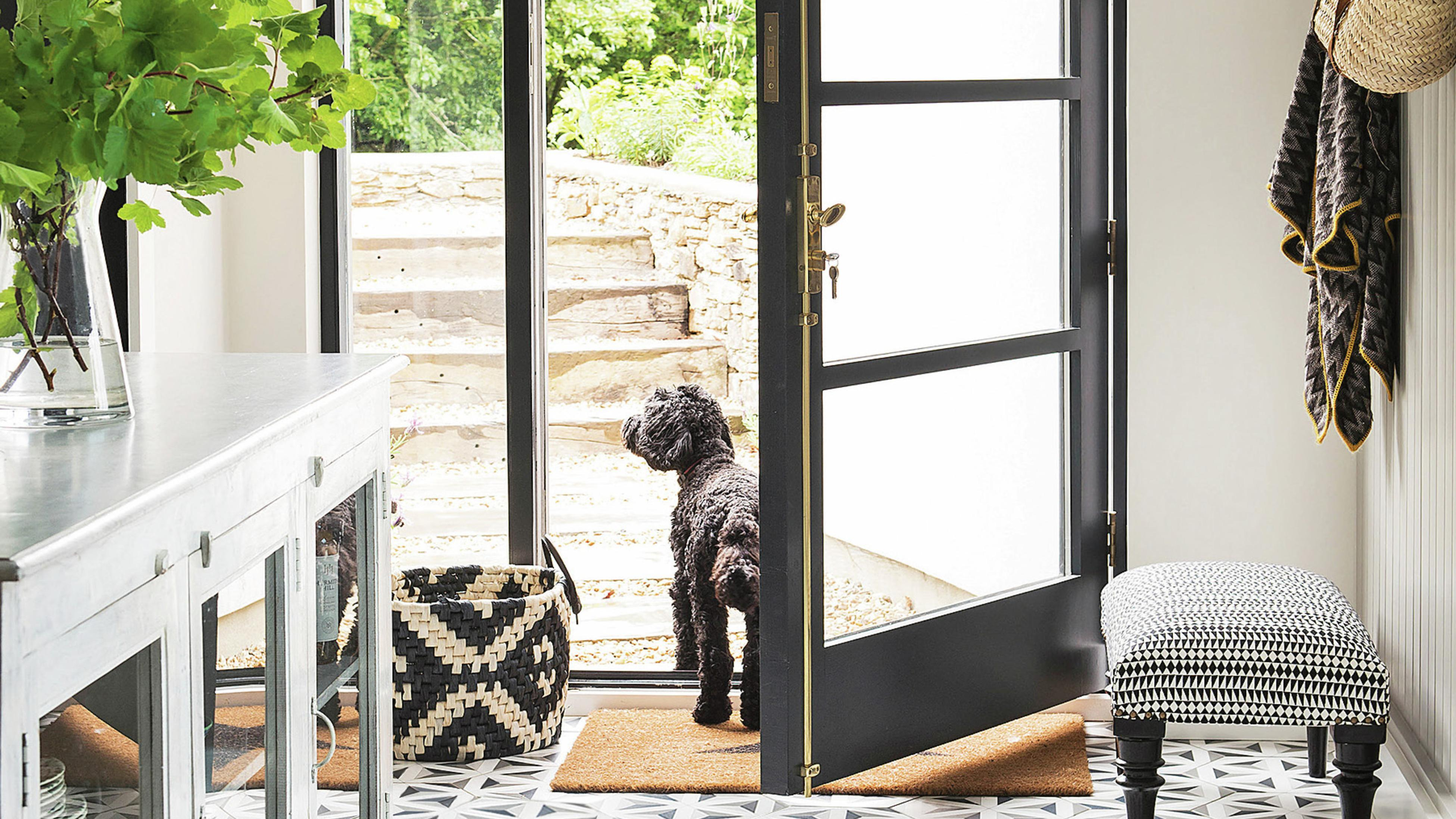 Entrance from front door with black cavoodle dog standing at entry.