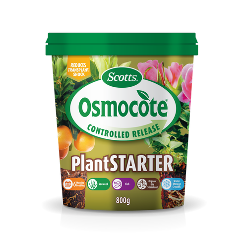 Scotts Osmocote 800g Plant Starter Controlled Release Fertiliser
