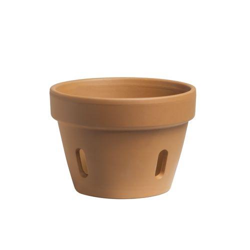 Northcote Pottery 15cm Italian Terracotta Orchid Pot