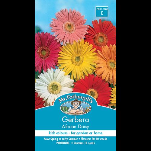 Mr Fothergill's Gerbera African Daisy Mixed Seeds